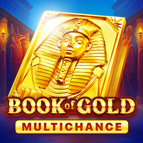 Слот Book of Gold Multichance