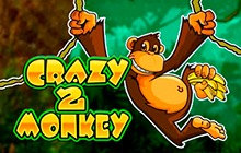 Slot Crazy Monkey 2