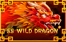Slot 88 Wild Dragon